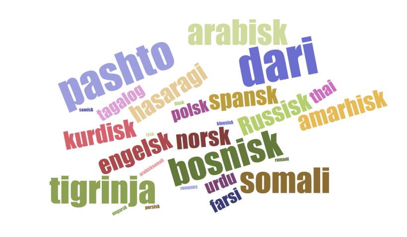 wordle språk